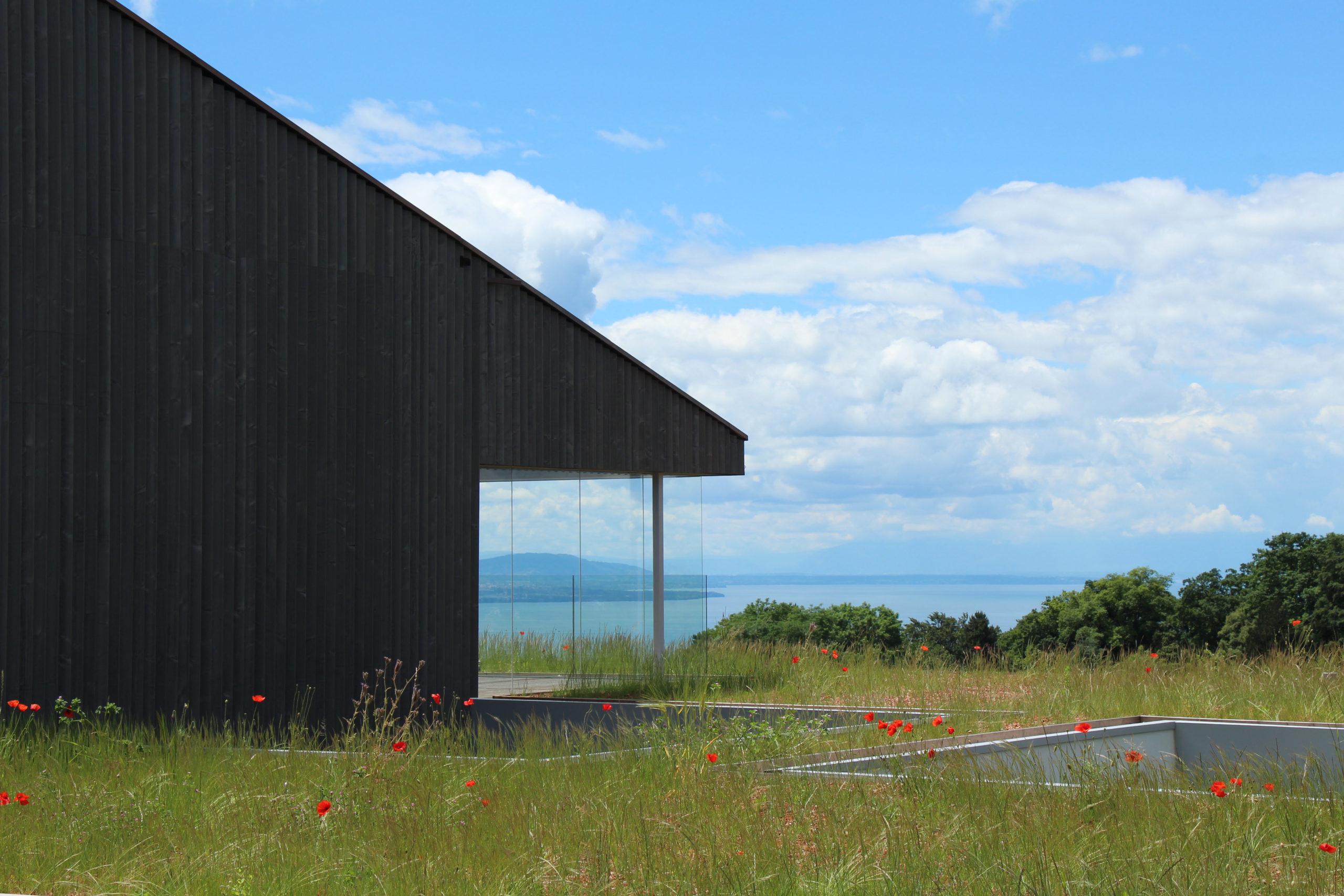 projet d'un nouveau quartier d'habitations- Minergie - Vaud - vue façade