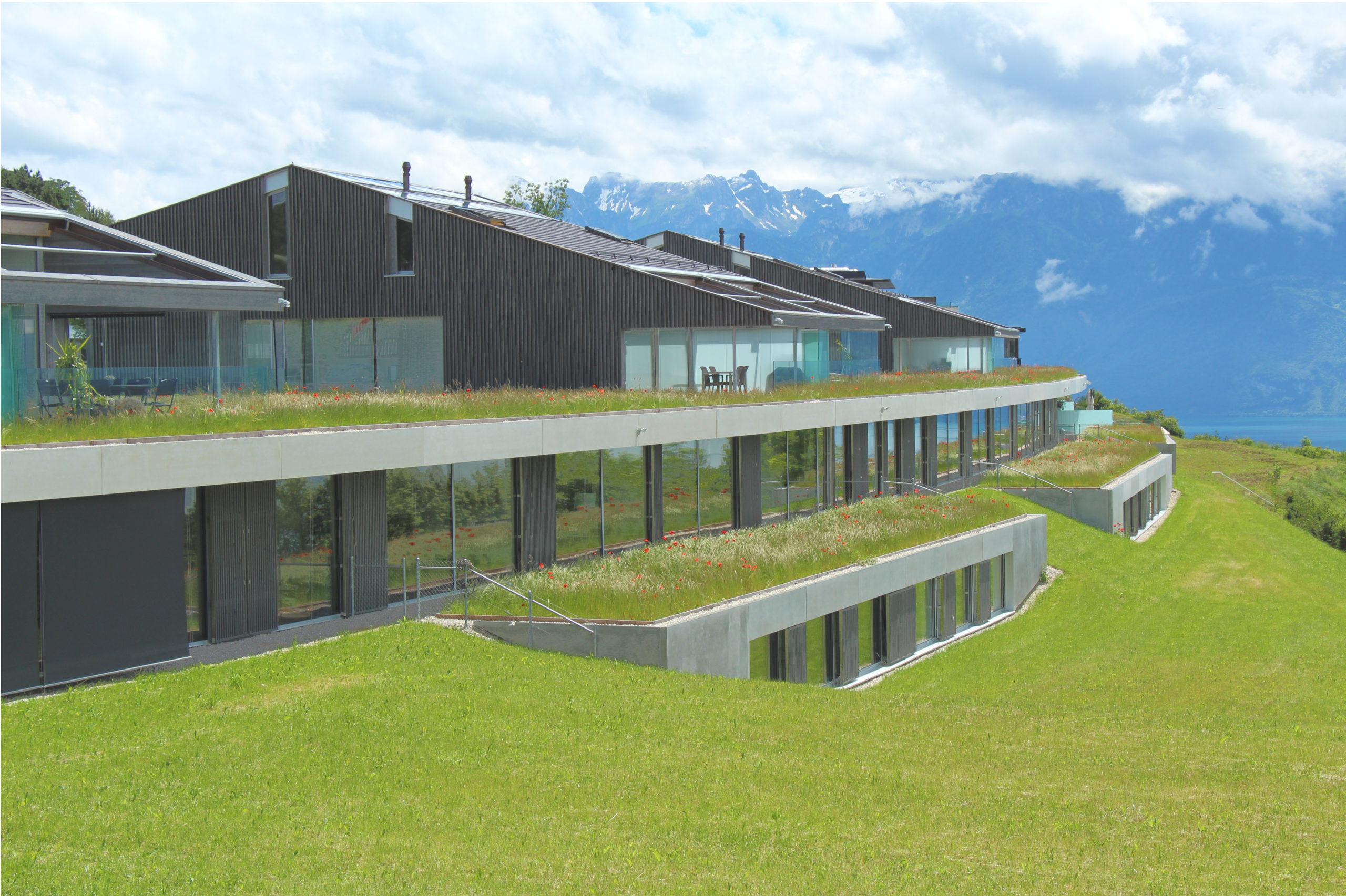 projet d'un nouveau quartier d'habitations- Minergie - Vaud - vue sud